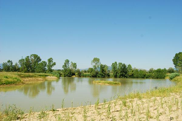 Lago di Bogaia 16 giugno 1