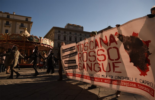 """Toscana: flash mob contro la legge """"ammazza cinghiali"""""""