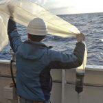 Mediterraneo di plastica, una ricerca del Cnr [foto]