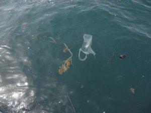 Mediterraneo di plastica