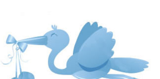 Cicogna azzurra