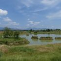 Nuova cassa di espansione Ponte Attigliano (foto Carlo Scoccianti - WWF)