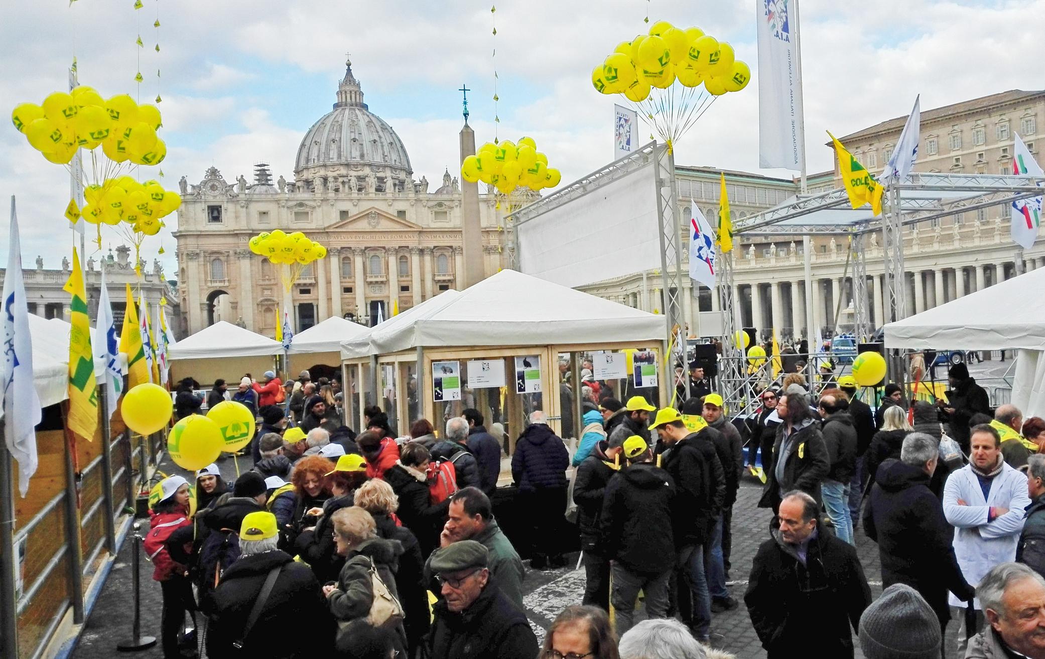 Allevatori e animali in piazza San Pietro