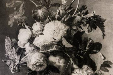 Van Huysum