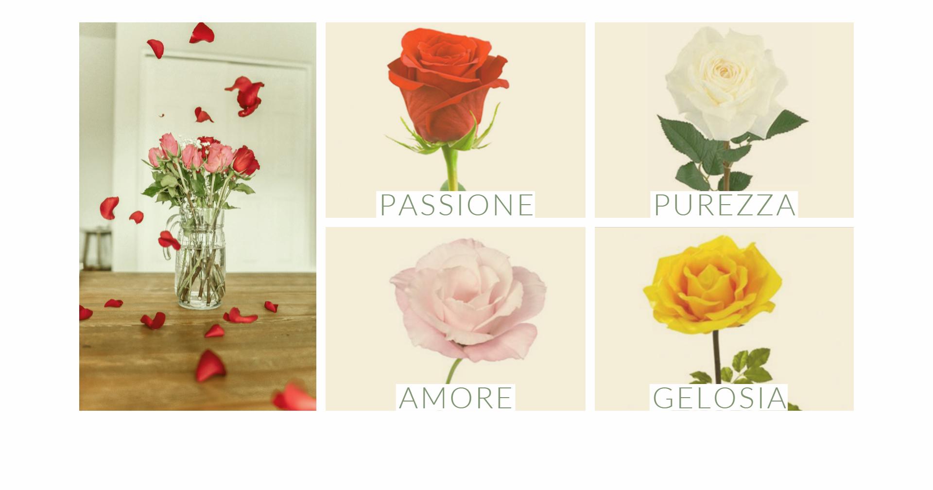 Il linguaggio dei fiori - le rose