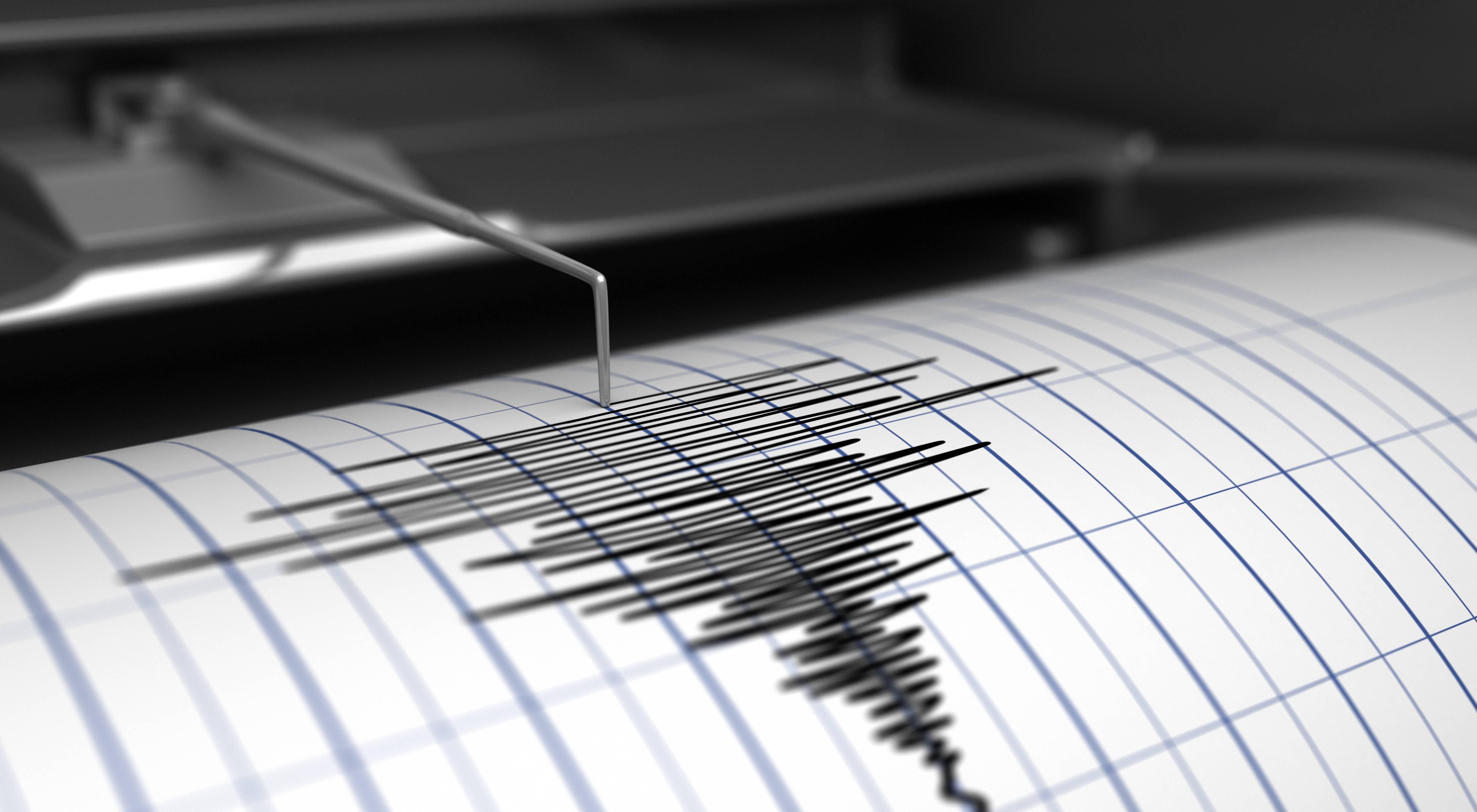 Sismografo scosse di terremoto