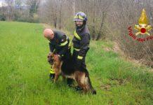 Vigili del fuoco col cane