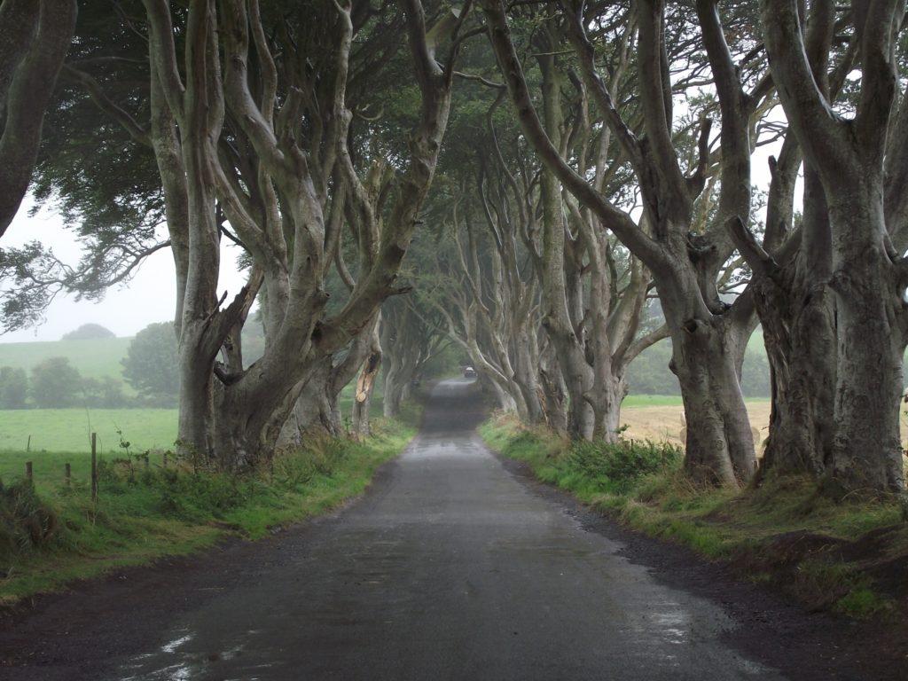 La strade del Re - Irlanda del Nord