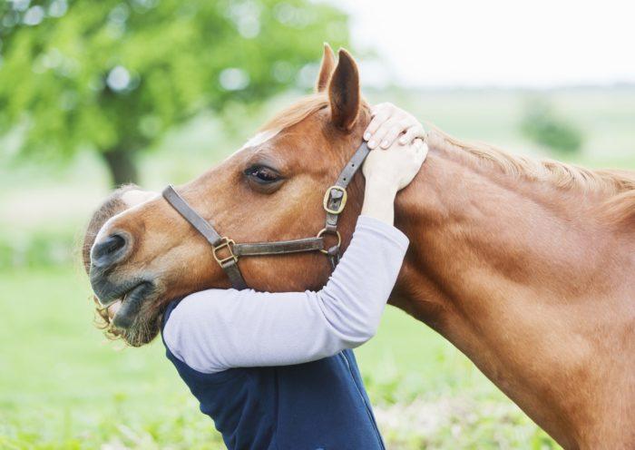 Mugello Cavalli torna fra 10 giorni sul lago di Bilancino