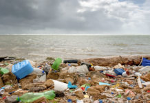Spazzatura di plastica su una spiaggia