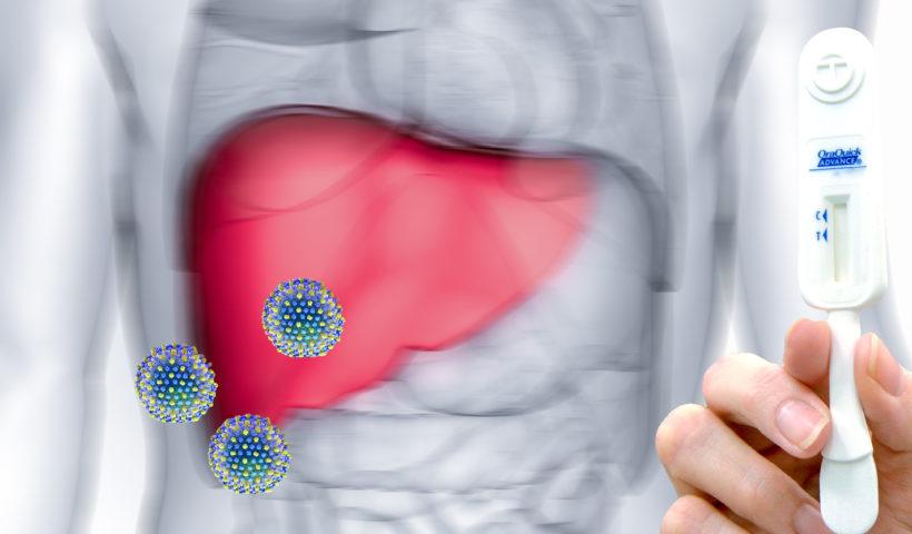 Virus hcv stilizzato con fegato e stick per esame della saliva per l'epatite c