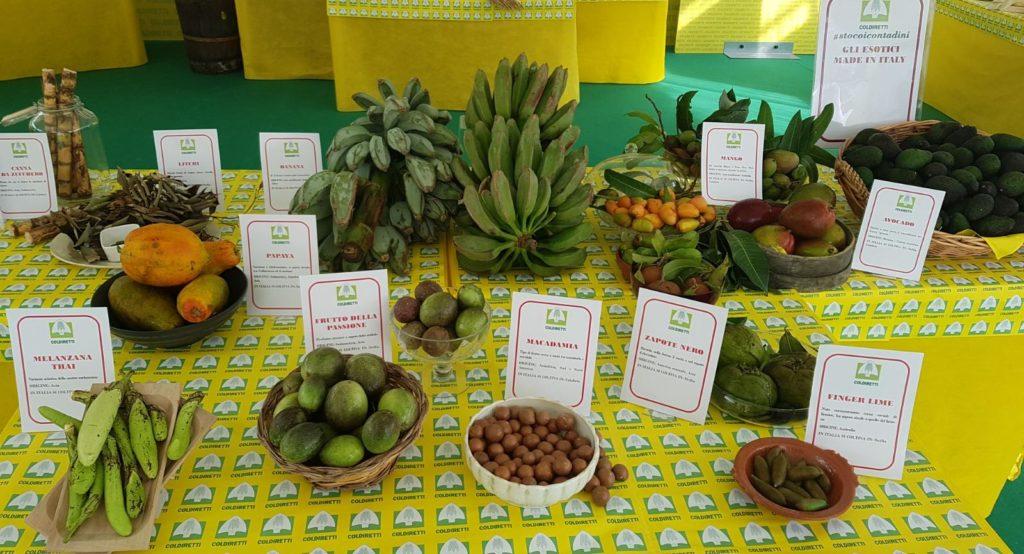 Frutta esotica made in Italy dalla manifestazione al Castello sforzesco di Milano