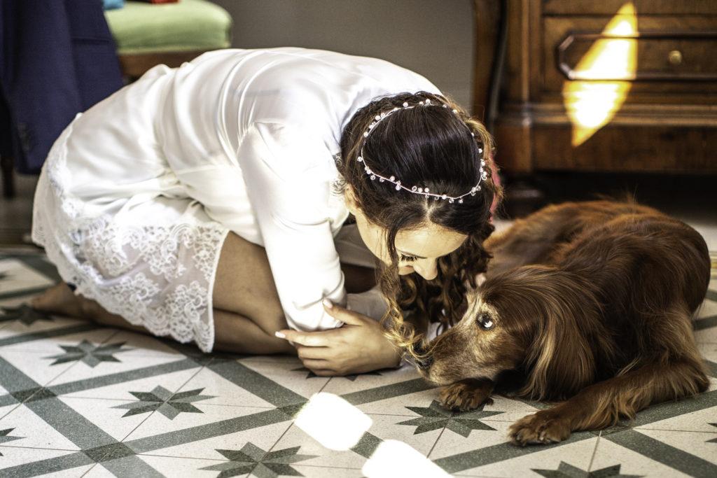 I Wanna Be Your Dog di Alessandro Castiglioni