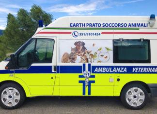 Ambulanza veterinaria EARTH Prato