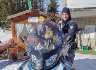 Poliziotto sulla neve a Bormio