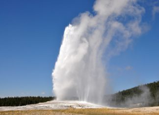 Un geyser di Yellowstone
