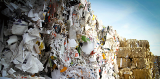 Carta raccolta e da riciclare