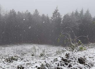 Neve montepiano gasperone novembre 2020