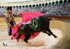 CLAUDIO CERRETELLI CARLO PALLI Olè, 2020 Fotografia a colori su pannello Dibond cm 50×75