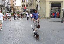 Stefano Mossa autore di Pinocchio 33 a passeggio con il cane