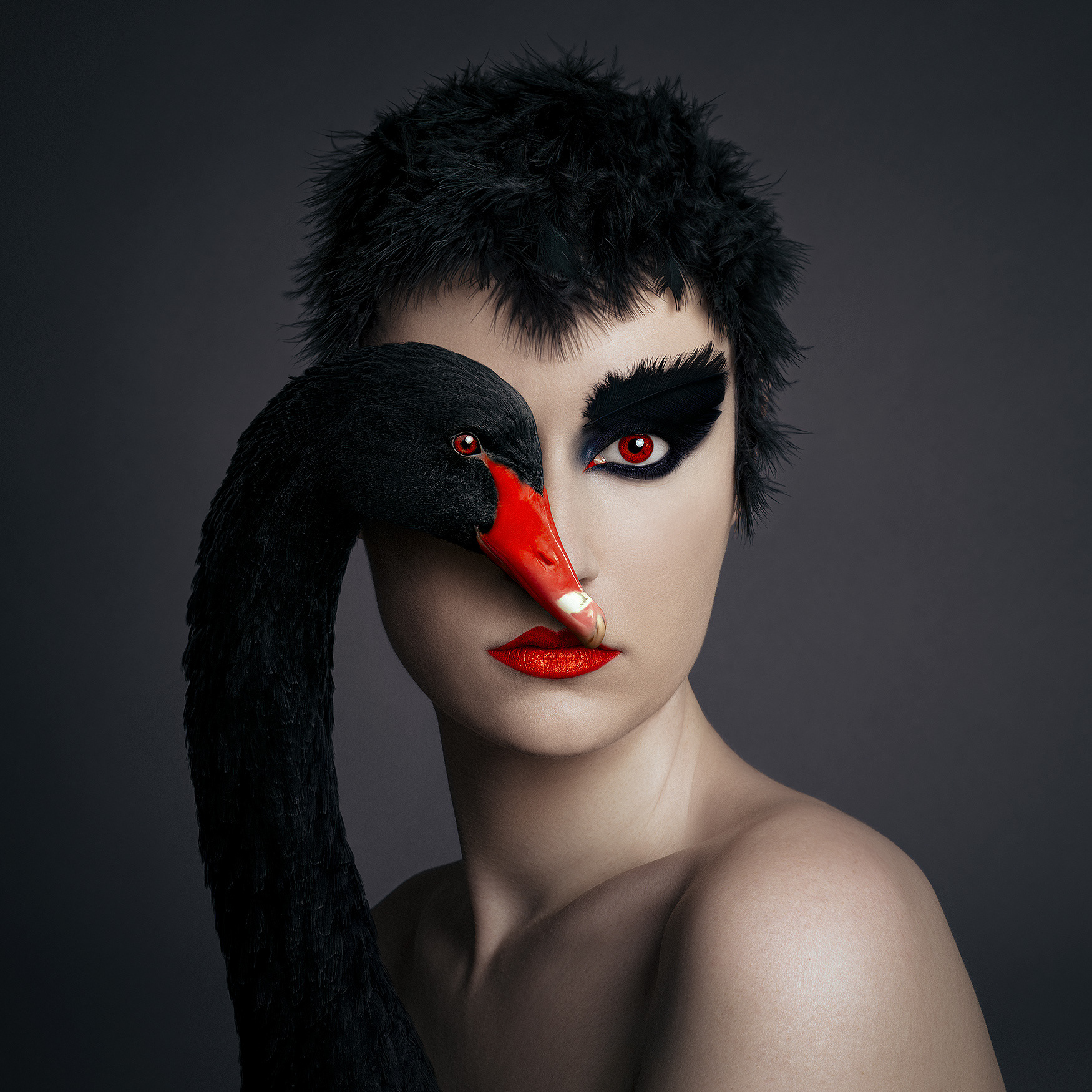 f. borsi, black swan, 2021